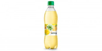 Beverage wholesale Sparkling  aloe vera  mango 500ml from RITA UK